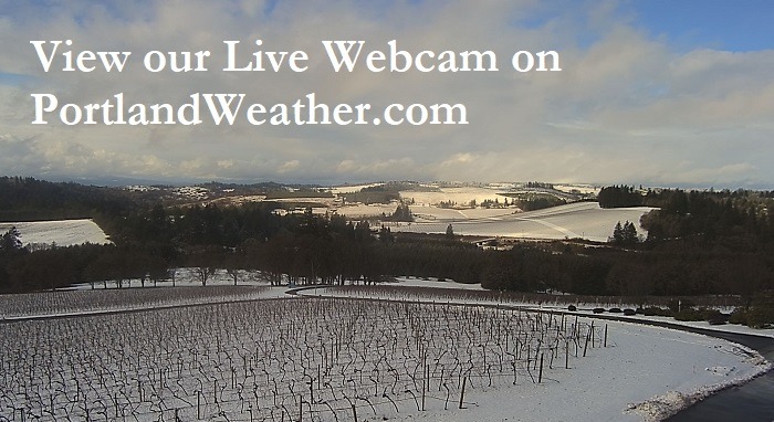 "Picture of Willamette Valley Vineyards with snow and the message ""View our Live Webcam on PortlandWeather.com"""
